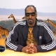 Watching Snoop Dogg Talk About Walruses On 'Jimmy Kimmel Live' Is Hilarious